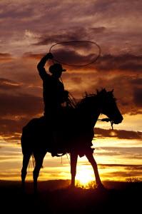 cowboy-300