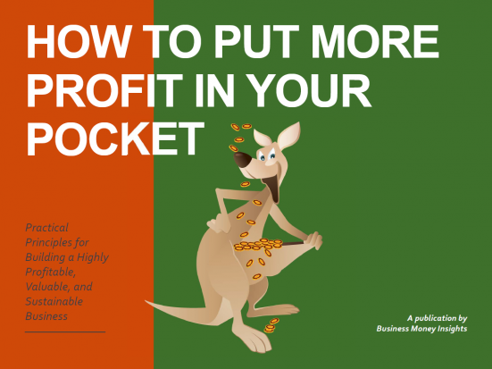 ebook cover-Put More Profit in Your Pocket